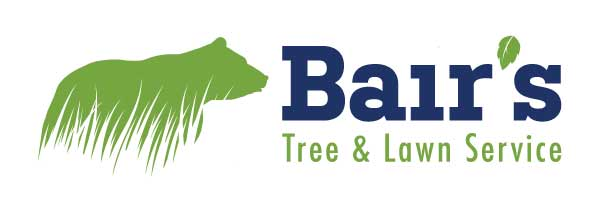 Located in Sellersville, PA., Bair's Tree and Lawn Service has been providing excellent customer service since 1981. The family-run company services Bucks, Montgomery, Lehigh, Berks and neighboring counties with a customer base of over 15,000, offering tree care, maintenance, stump grinding, management of tree hazards and storm damage, as well as a tailored turf care program which includes lawn fertilization, weed control, seeding & renovation, insect & disease control.