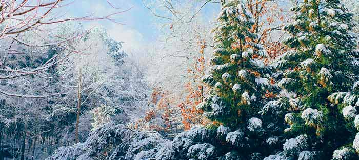 winter is a wonderful time to enjoy shopping, dining, and the wonderful sights in Montgomery County, PA